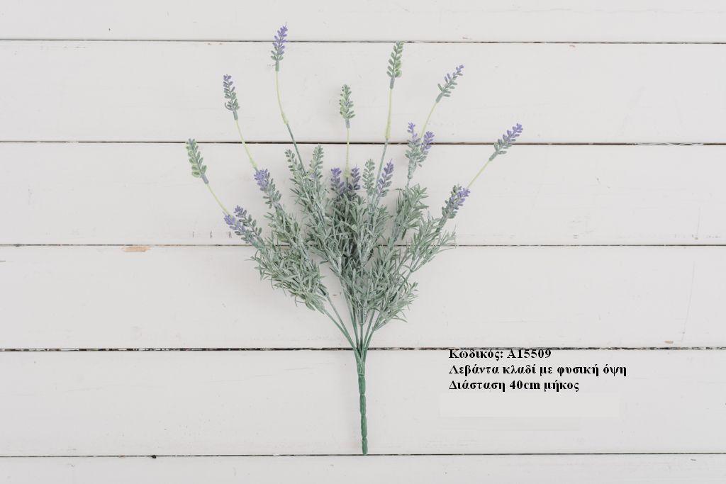 ΛΕΒΑΝΤΑ ΚΛΑΔΙ 40cm - ΚΩΔ: A15509-RA