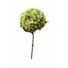ΟΡΤΑΝΣΙΑ ΠΡΑΣΙΝΗ ΚΛΑΔΙ 110cm - ΚΩΔ: A15734-GREEN-RA