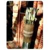 ΣΤΟΛΙΣΜΟΣ ΓΑΜΟΥ ΣΕ RUSTIC ΥΦΟΣ - ΑΓΙΑΣΜΑ - ΕΥΚΑΡΠΙΑ - ΚΩΔ: BD-0909