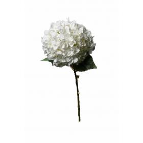 ΟΡΤΑΝΣΙΑ ΛΕΥΚΗ ΚΛΑΔΙ 110cm - ΚΩΔ: A15734-WHITE-RA