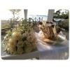 Στολισμός Γάμου Σε Λευκό Και Χρυσό - Παρεκκλήσι Άγιου Γεώργιου - Νέα Κρήνη - ΚΩΔ:Gold-0310