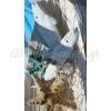 ΣΤΟΛΙΣΜΟΣ ΒΑΠΤΙΣΗΣ ΣΤΗ ΣΚΙΩΝΗ ΧΑΛΚΙΔΙΚΗΣ ΔΙΠΛΑ ΣΤΗ ΘΑΛΑΣΣΑ  - ΚΩΔ.: NS456
