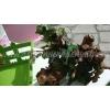 ΣΤΟΛΙΣΜΟΣ TINKERBELL - ΘΕΣΣΑΛΟΝΙΚΗ ΣΤΟΝ ΠΡΟΦΗΤΗ ΗΛΙΑ ΣΤΗΝ ΑΝΩ ΠΟΛΗ - ΚΩΔ: TINK-01