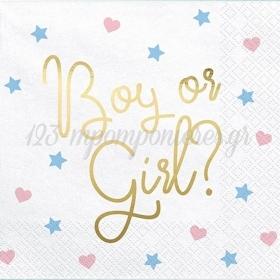 ΧΑΡΤΟΠΕΤΣΕΤΕΣ 'BOY OR GIRL' - ΚΩΔ:SP33-78-BB