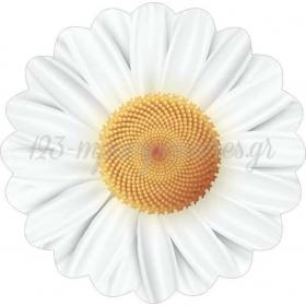 ΧΑΡΤΙΝΟ ΣΟΥΠΛΑ ΣΧΗΜΑΤΙΚΟ ΜΑΡΓΑΡΙΤΑ - ΚΩΔ:553130-15-BB