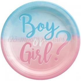 Χαρτινα Πιατα Παρτυ Gender Reveal 22.8Cm - ΚΩΔ:9911333-Bb