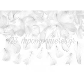 Πουπουλα Λευκα 5-7Cm - ΚΩΔ:496602-Nt